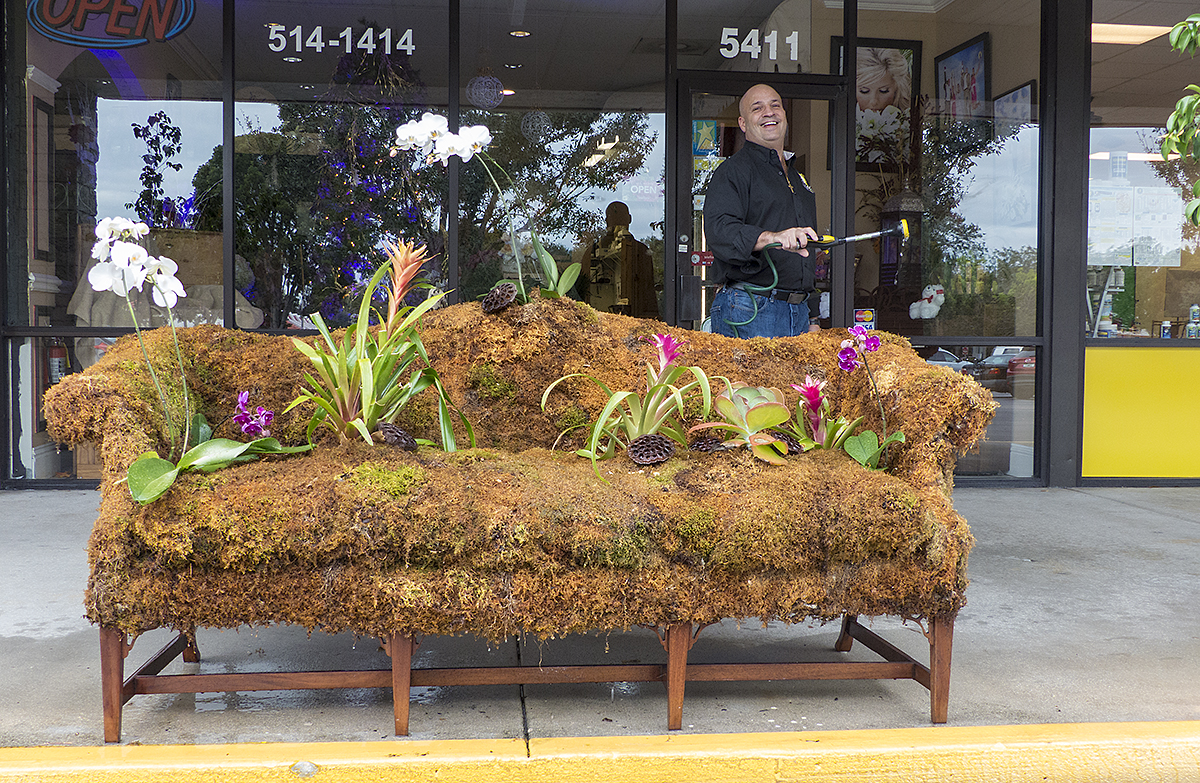 Moss covered sofa in front of Naples Floral!